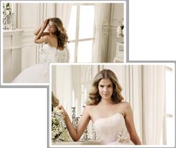 絹屋衣裳総本店と連携してドレスをストックしている為品質の高いドレスを安心の価格でレンタル出来ます